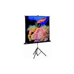 Ecran de projection PROCOLOR 173 CM